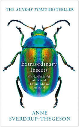 Extraordinary Insects : Weird. Wonderful. Indispensable. the Ones Who Run Our Wo