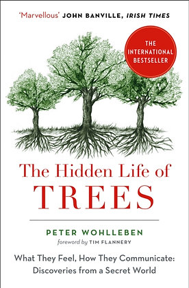 The Hidden Life of Trees by Peter Wohllebe
