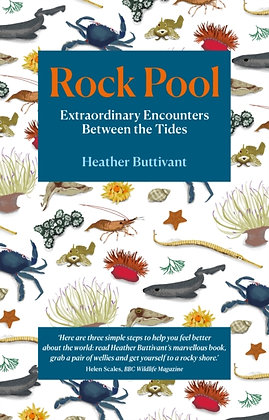 Rock Pool: Extraordinary Encounters Between the Tides  by Heather Buttivant