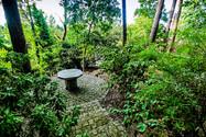 Jardim4.jpg