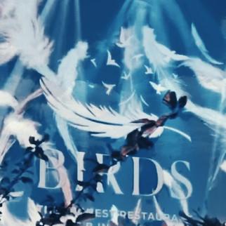 официальное сайт  Birds  в Москва Сити р