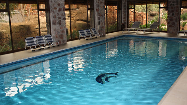 Group/Family Lodge: Central Indoor Heated Pool