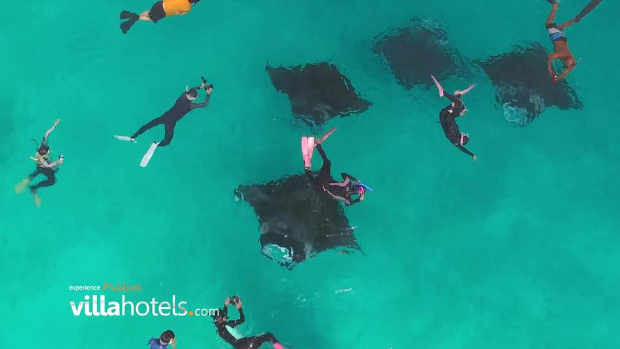 The Royal Mantas by Villa Hotels - Maldi