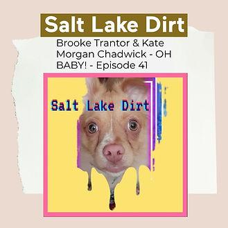 SALT LAKE DIRT.jpg