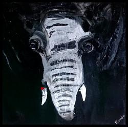 elephant_framed