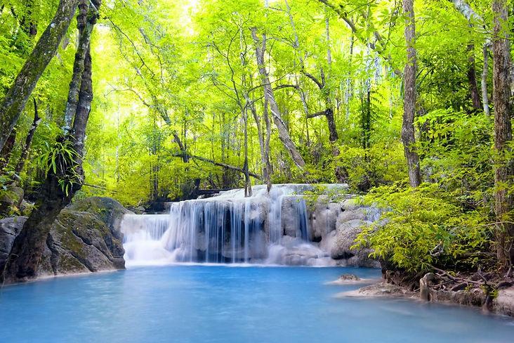 wodospad w lesie.jpg