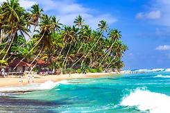 Tropikalna-plaża-Sri-Lanki.webp