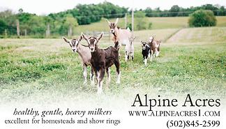 AlpineAcres-DAnson.png