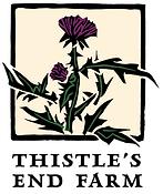 Thistle_s End Farm branding system_four
