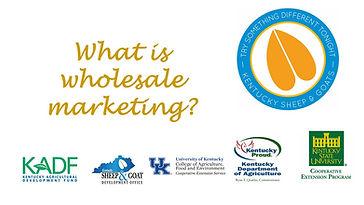 wholesale marketing.jpg