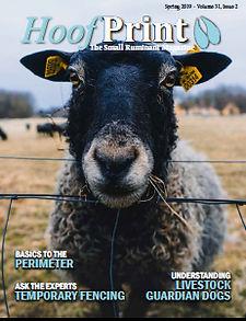 Spring 2019 cover.jpg