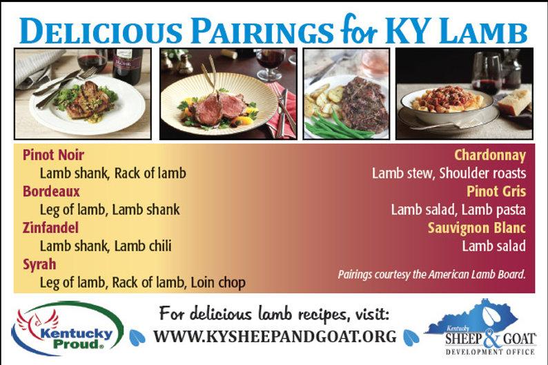 Lamb Nutrition Card