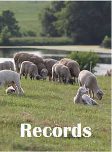 record book cover.jpg