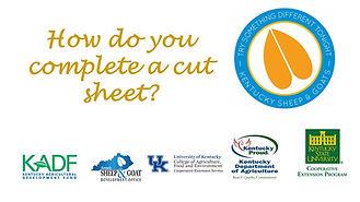 cut sheet.jpg