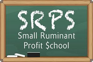 SRPS-Chalkborder.jpg