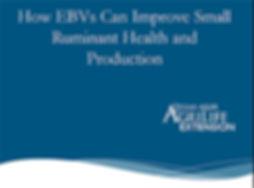 EBV.jpg