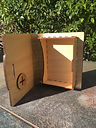 Box with living hinge 2.JPG