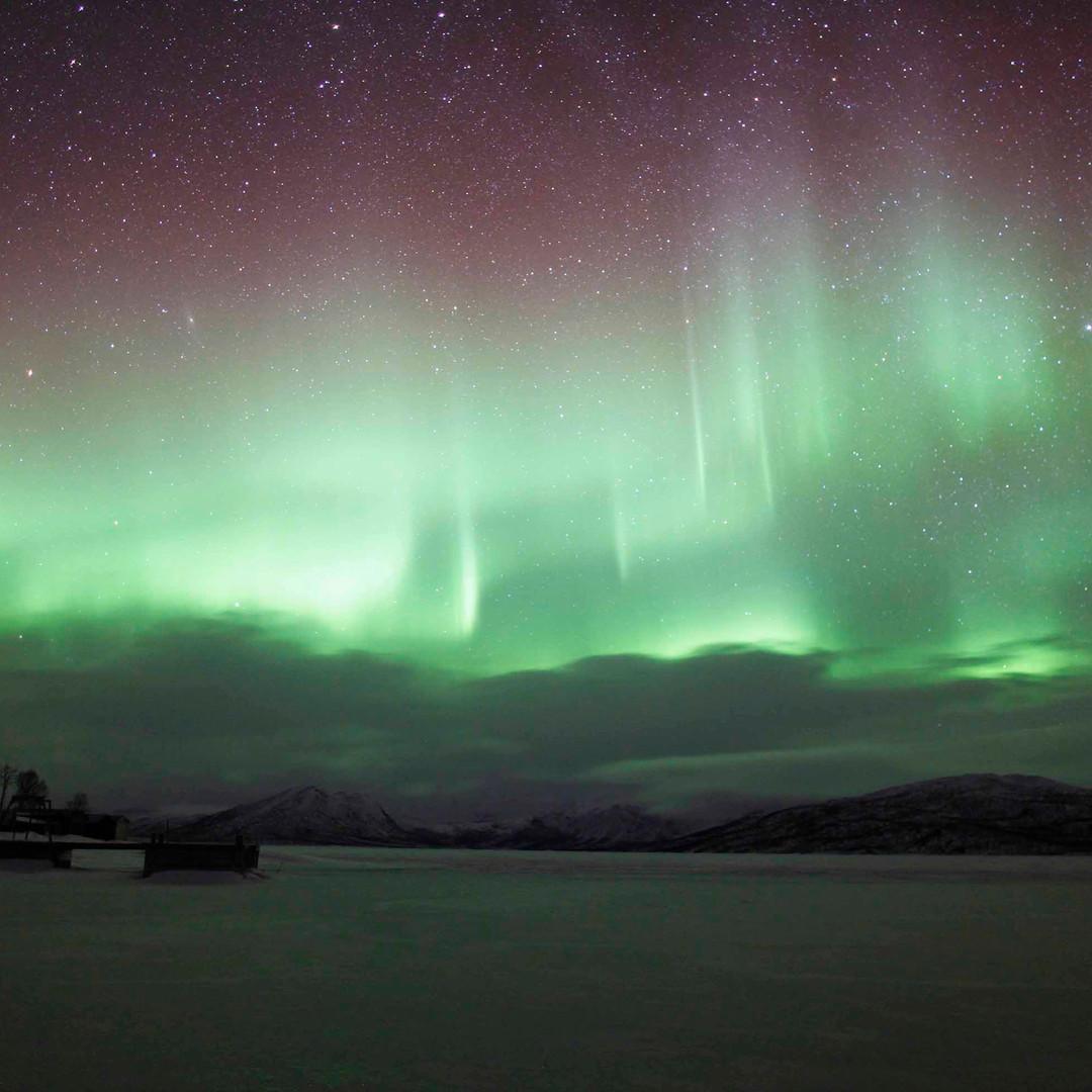 Aurora Borealis - Dora