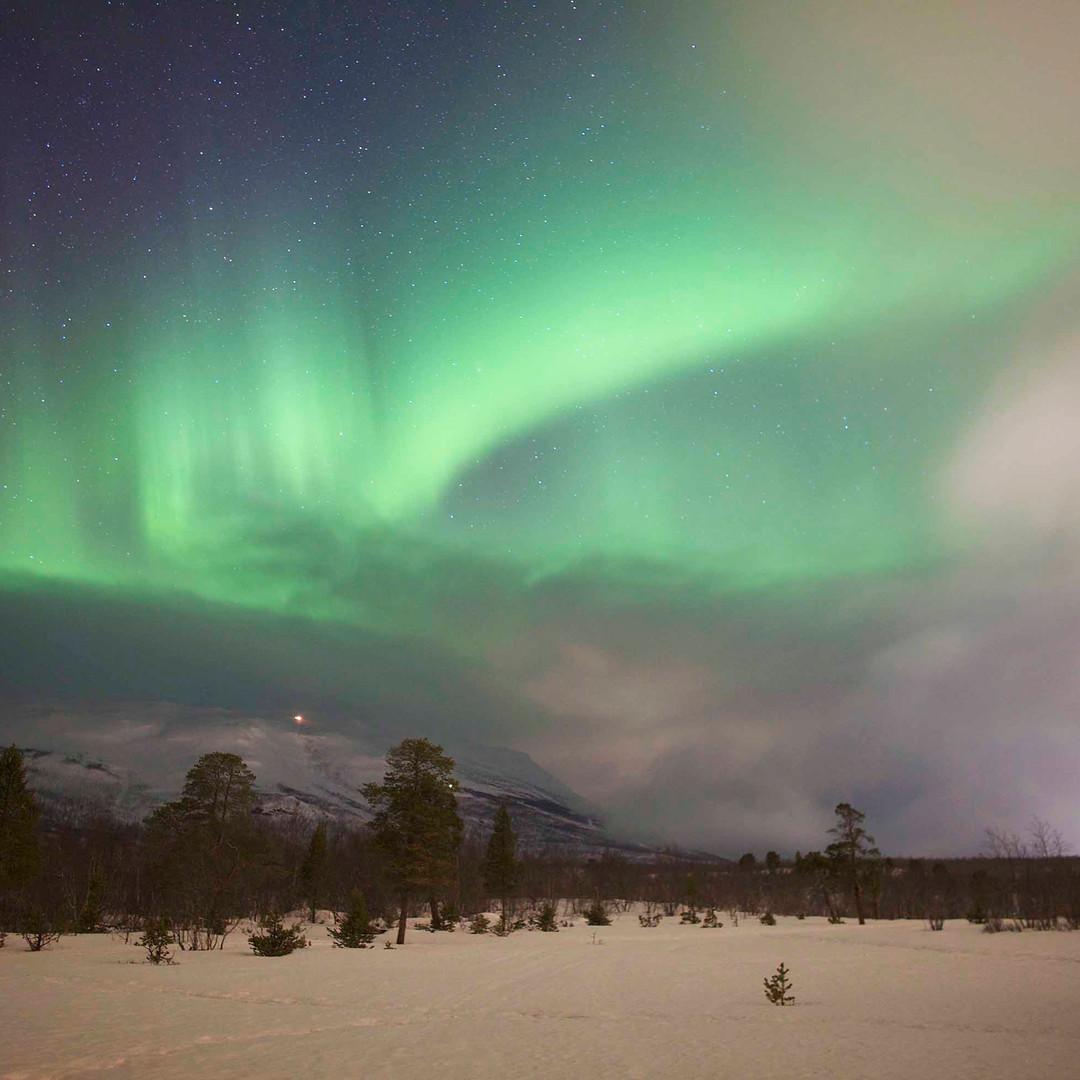 Aurora Borealis - Sarah