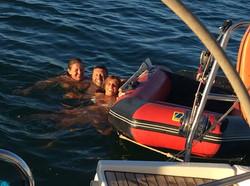 diving on harfang