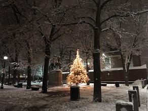 有聖誕樹的日子|大齡女子的白色聖誕節