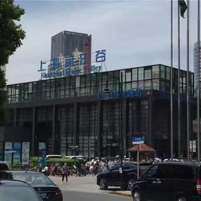 傳統上海與現代上海的和諧相處