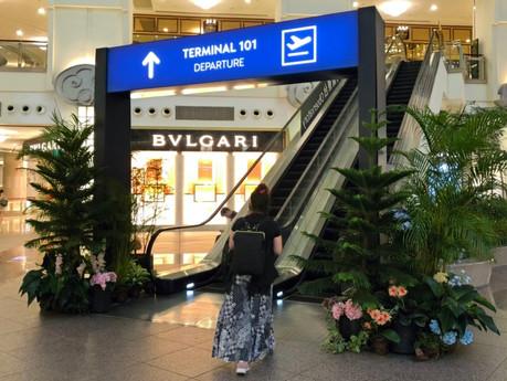 「戴」妳環遊世界   台北 101 購物中心