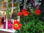 在 Bicester Village 的春天