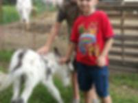 20180707_120002 DONKEYSAIRBNB KIDS.jpg