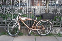 portrait bike 2