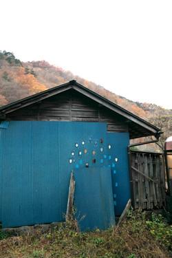 nikko blue shed