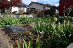 kitakta home garden