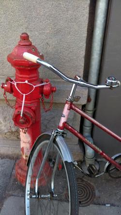 portrait bike 3