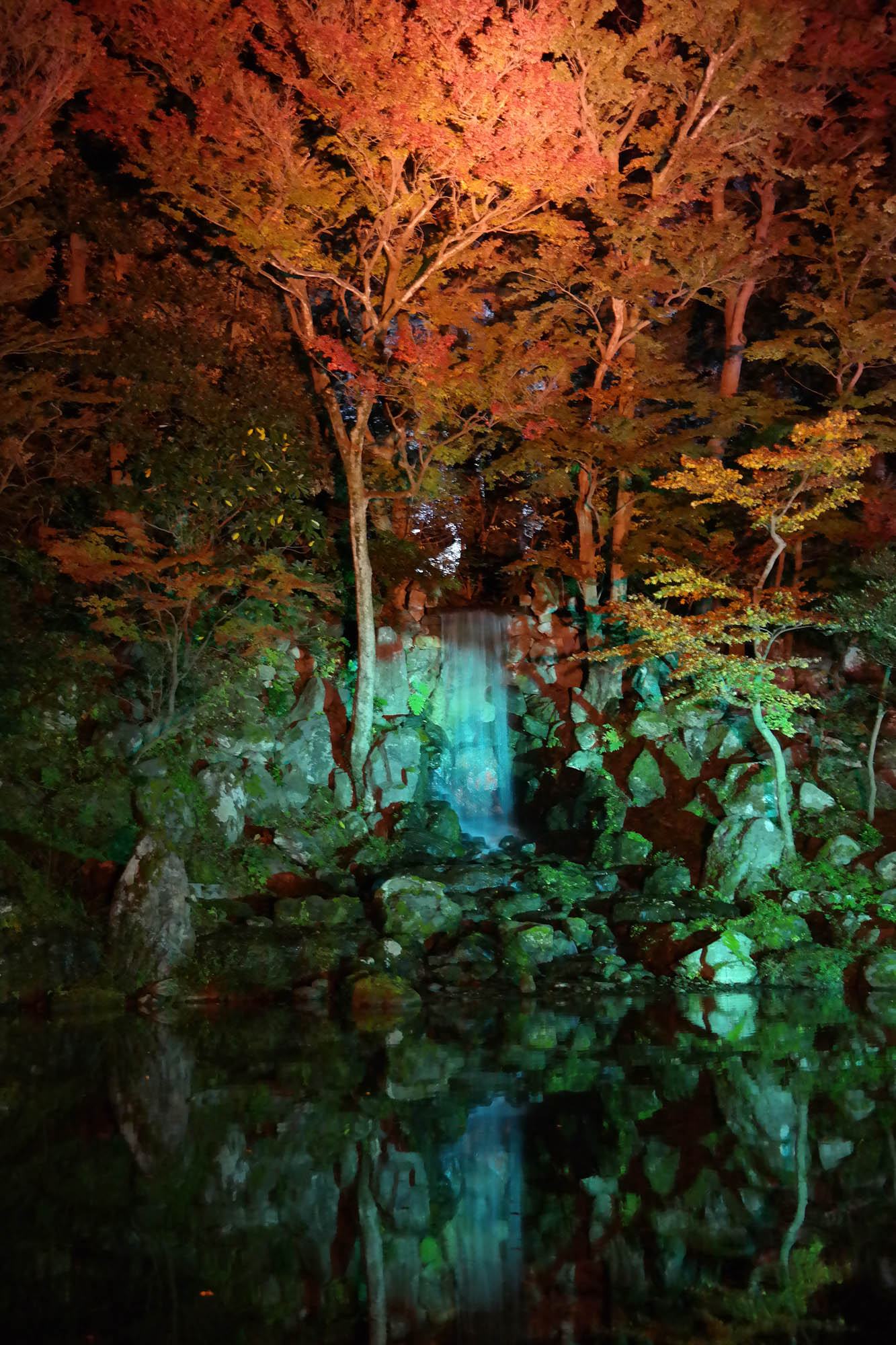 Japanase Garden at night