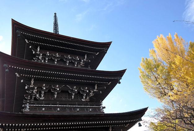 SAM_6925_takayama symmetry.jpg