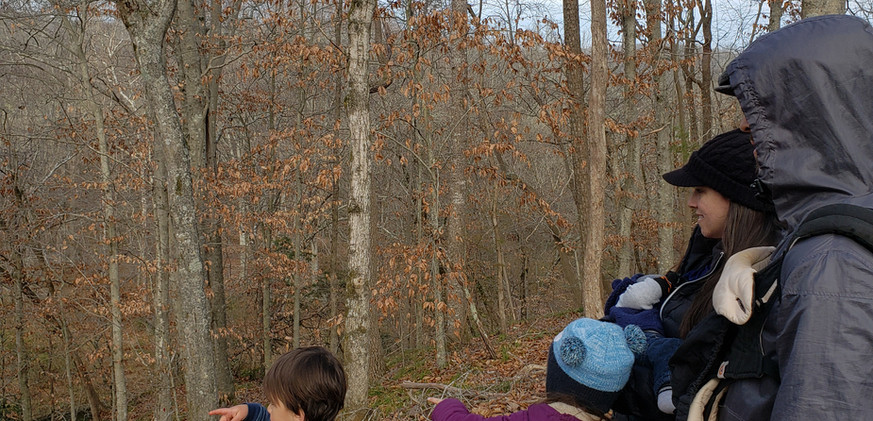 CWW_foresttherapy12.2020.jpg