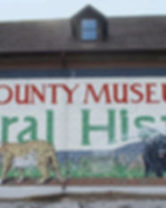lewiscountymuseumofnaturalhistory-featur