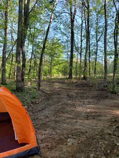 On the Buffalo Camping