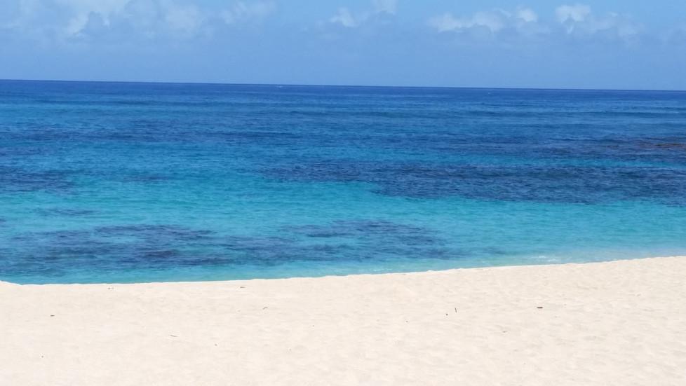 A Hawaiian Layover