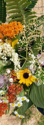 campwonderwander_wildflowersjune2021.jpg