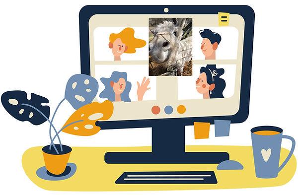 Donkey VirtualMeeting