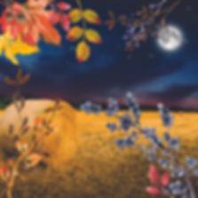 harvest moon collage no type.jpg