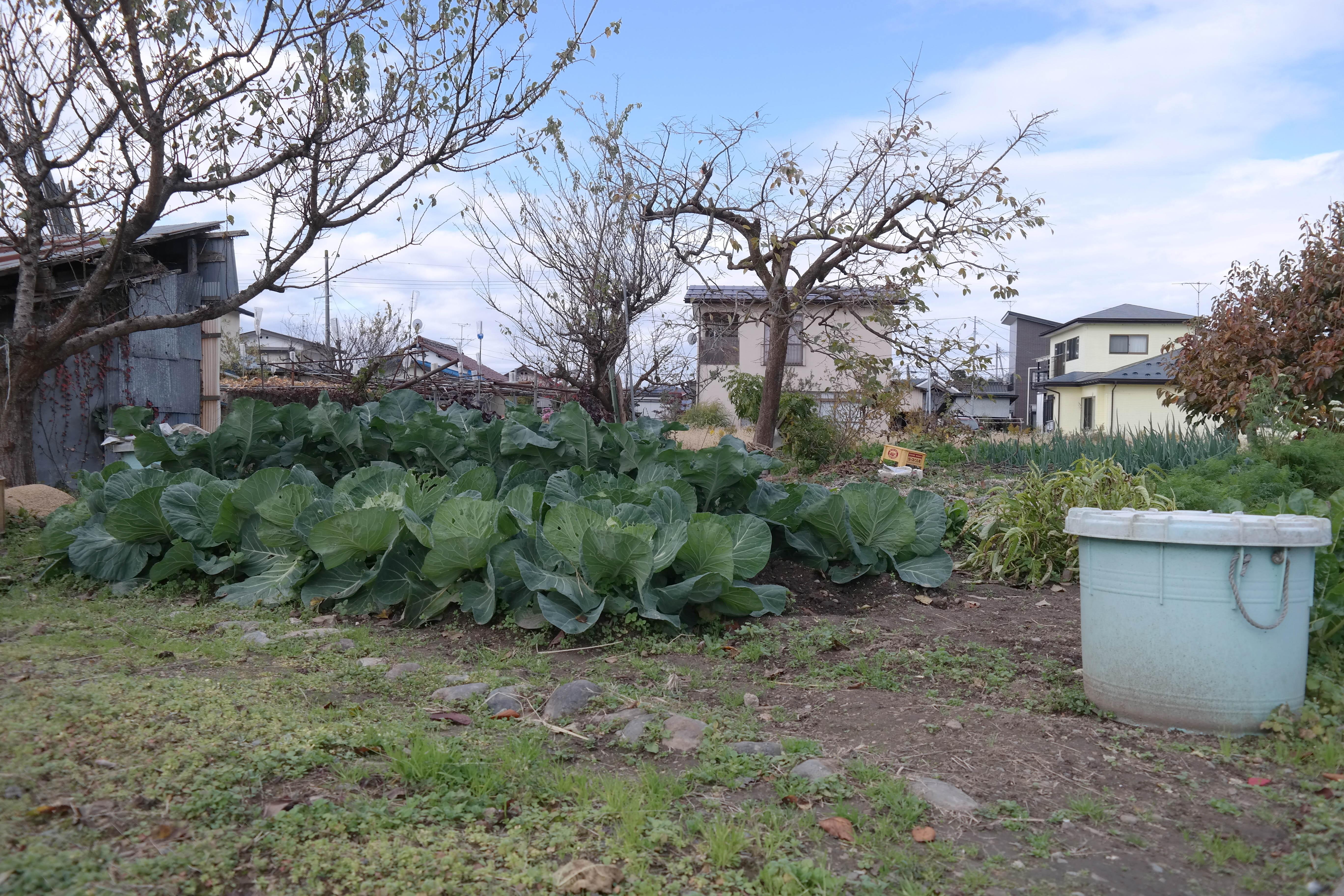 kitakata gardening community