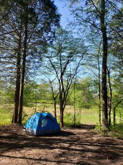 On the Buffalo Campsites