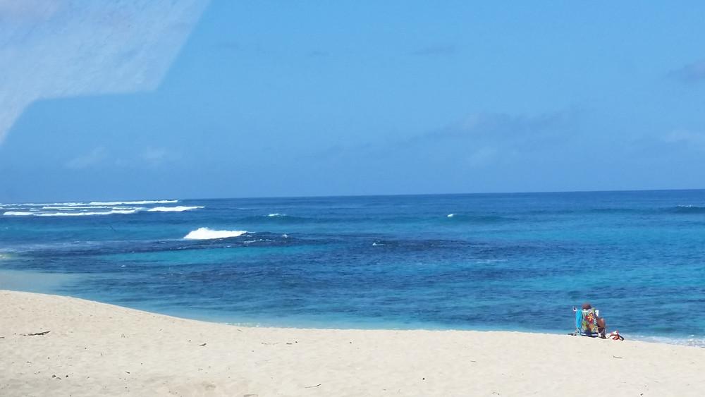 Take a dip in the ocean!