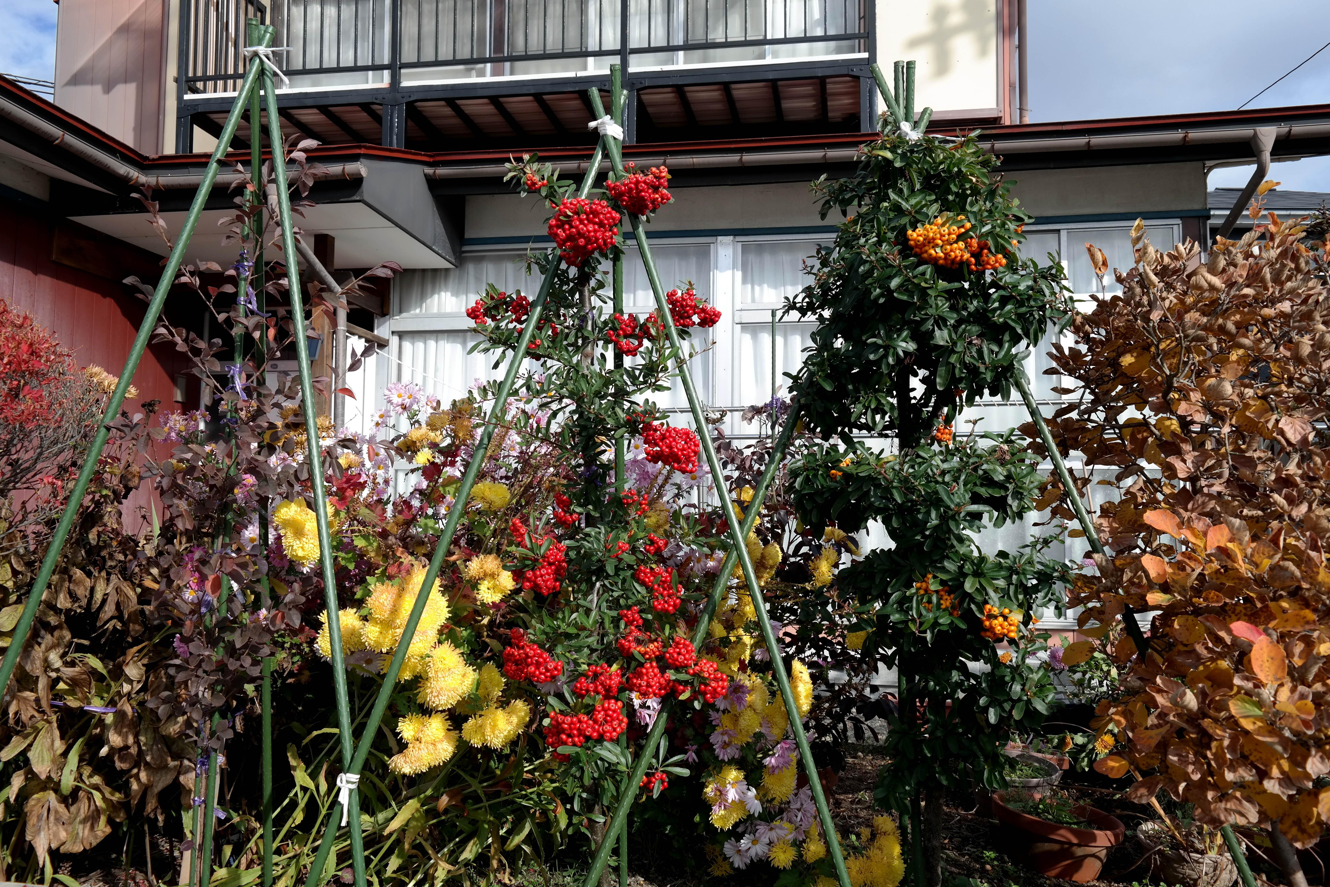 kitakata front garden