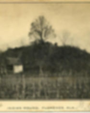 FLORENCEINDIANMOUND.jpg