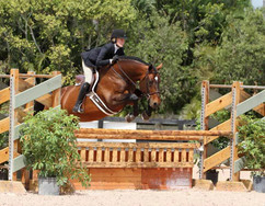 Relondo Z at Wef