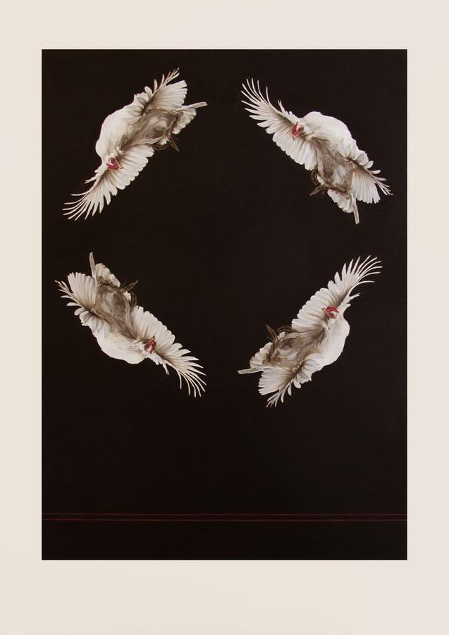 quattuor volantis pullos (four flying chickens)