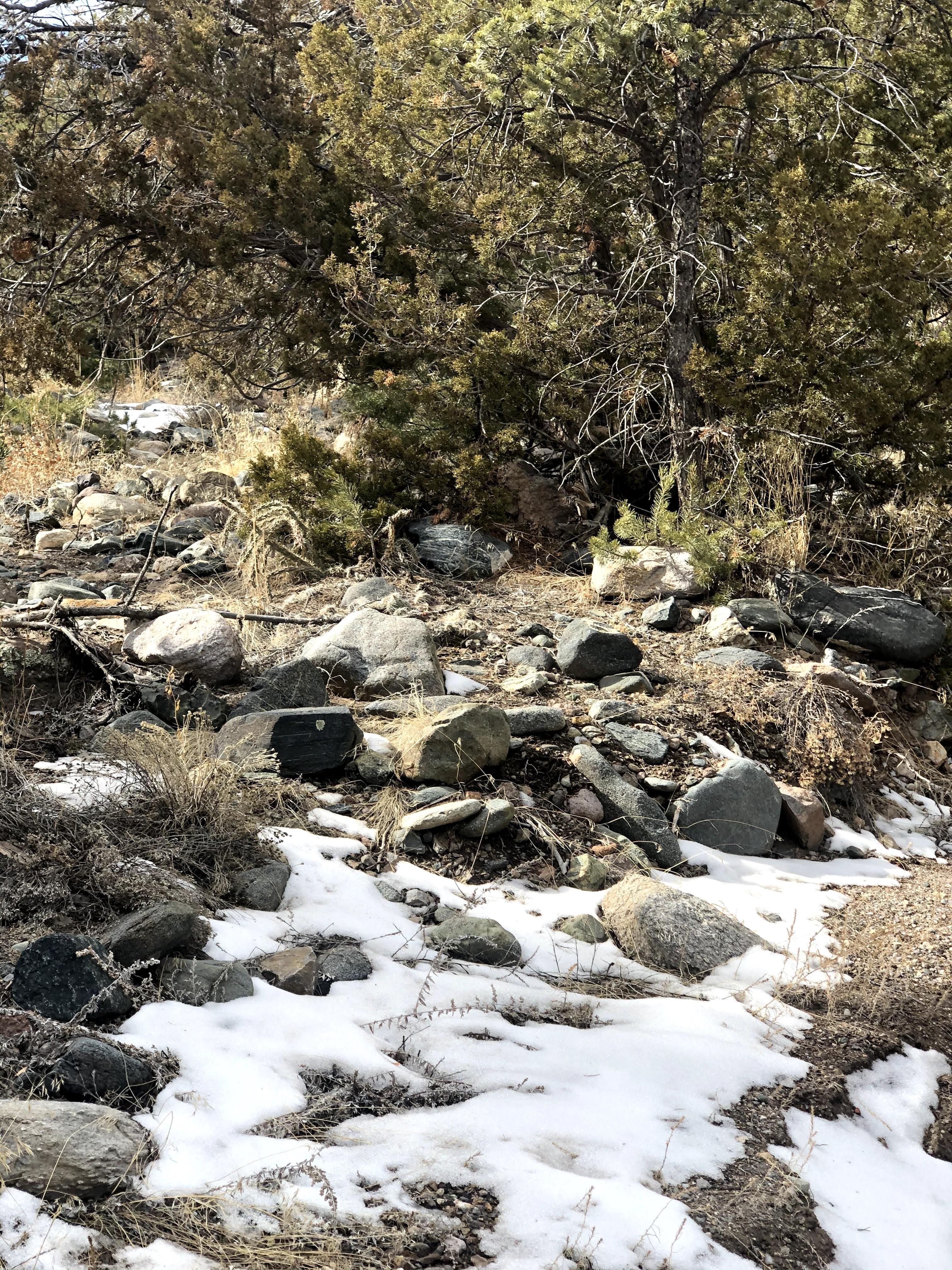 Natural Nature Trails